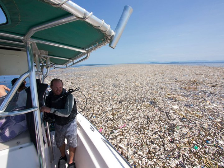 Ученые разработали программу по спасению Мирового океана