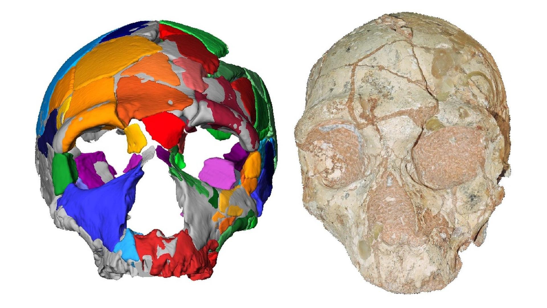 Останки homo sapiens возрастом 210 тысяч лет
