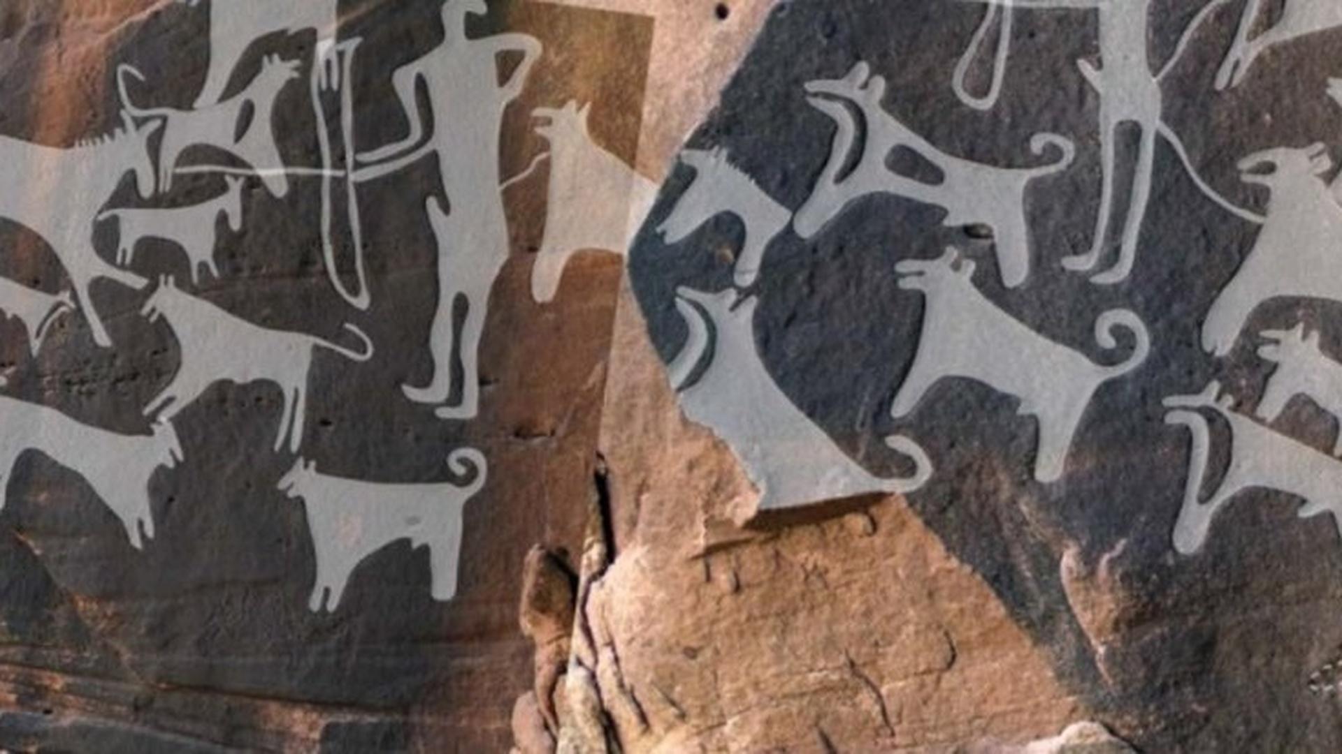 Рисунки собак возрастом 8 тысяч лет