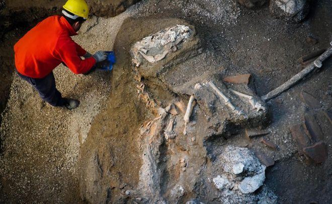 В Швеции найдены останки принадлежащие предкам викингов