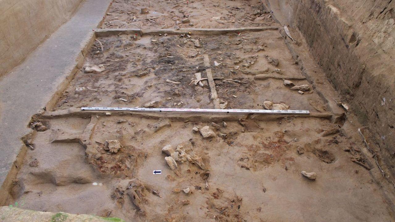 Святилище каменного века найдено в Брянской области