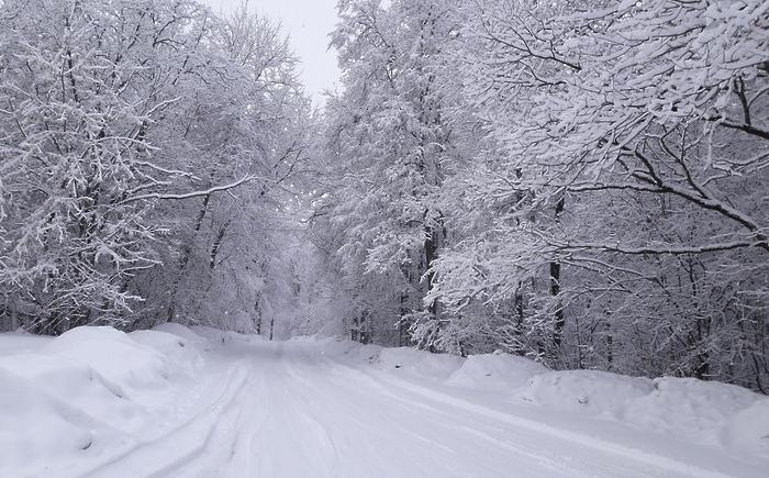 """Ученые: """"Мы больше никогда не увидим снега"""""""