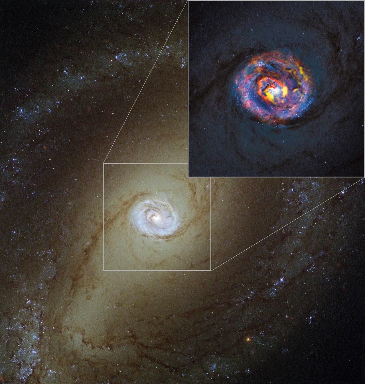 Пылающее сердце NGC 1433