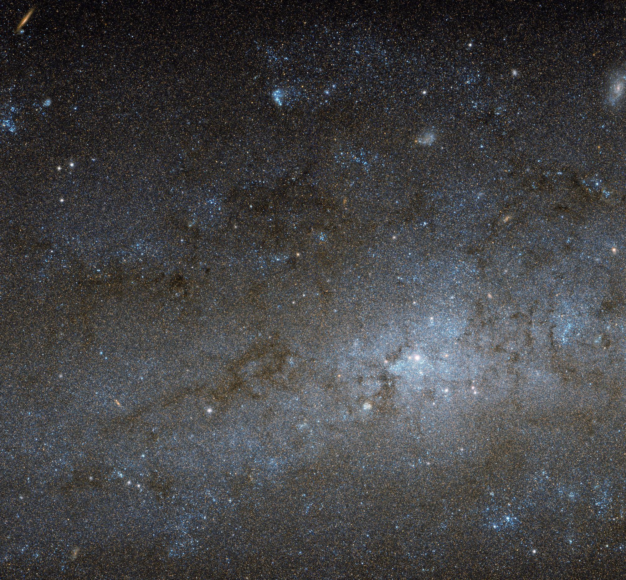 «Звездная пустошь» в галактике NGC 247