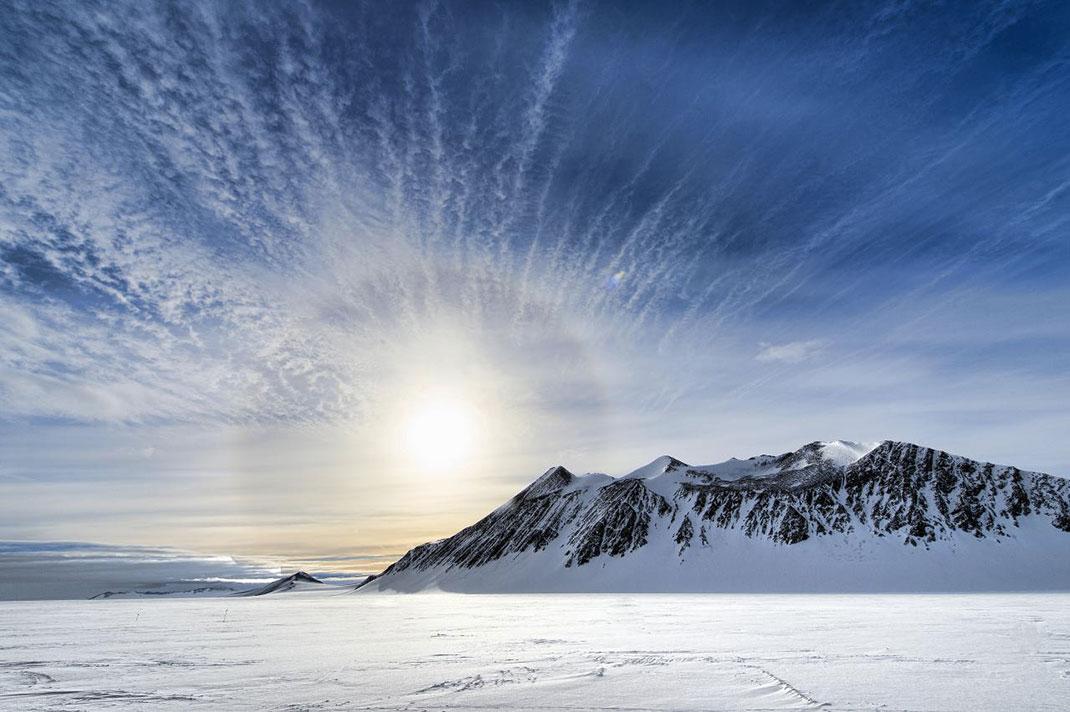 Антарктида: фантастические монстры и где они обитают
