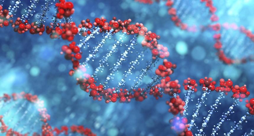 ДНК - хранилище наследственной информации